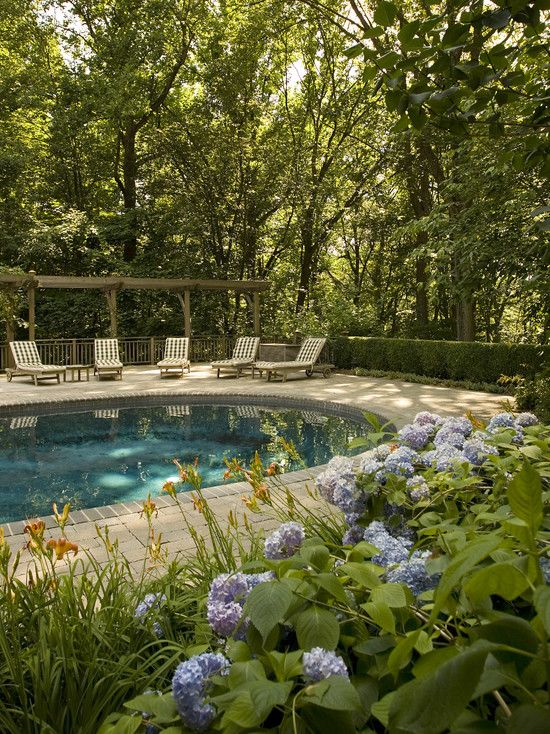1000 images about backyard ideas on pinterest pool for Gardens around pools
