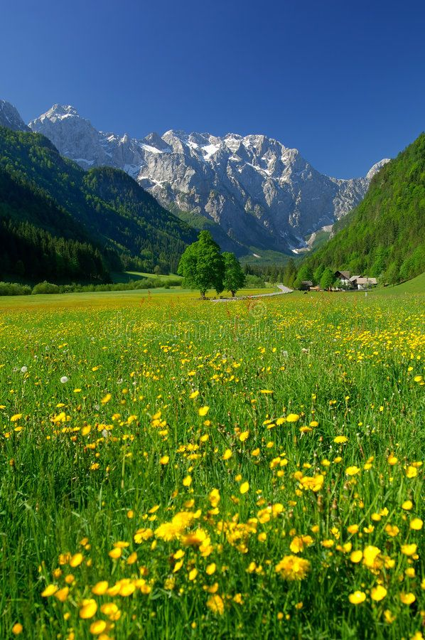 Spring In Alpine Valley In Northern Slovenia Sponsored Alpine Spring Valley Slovenia No Spring Scenery Beautiful Landscapes Landscape Photography