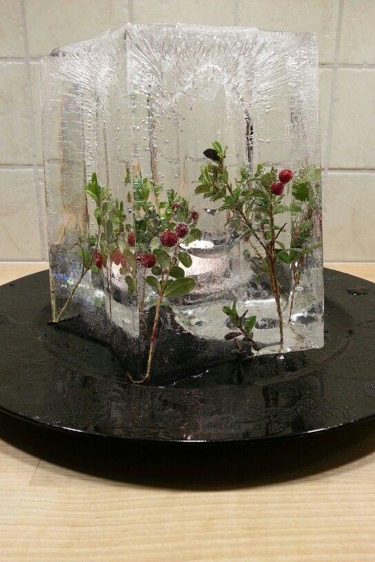 Islykt med tyttebær ferdig! #diy #islykt #icelantern  Stjerneform fås kjøpt på www.multitrend.no - gratis frakt