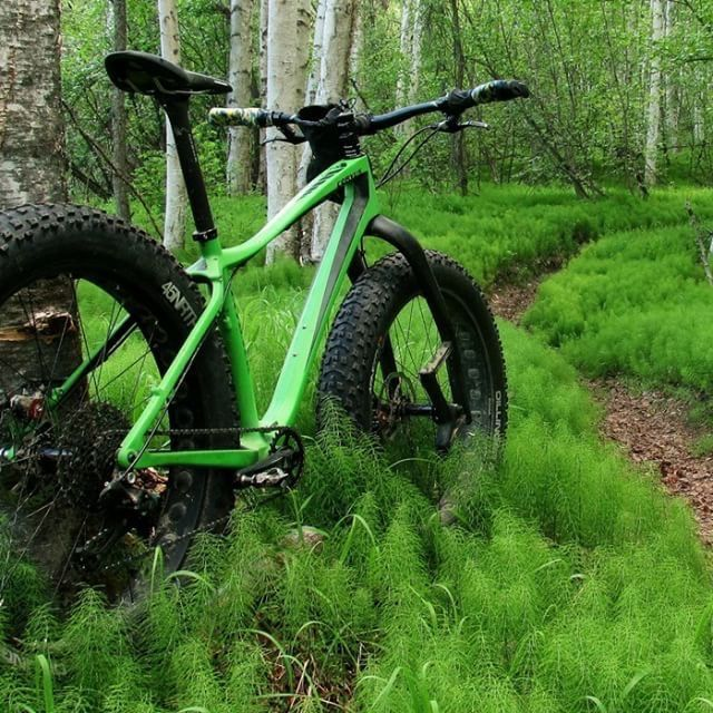 75 Best Fat Tire Bikes Images On Pinterest Bicycles 2 In And