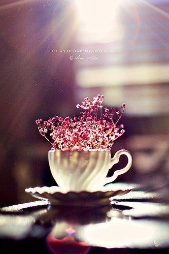 coffee: Lights, Floral Centerpieces, Teas Cups, Paper Flower, Cute Ideas, Art, Green Plants, Tea Cups, Teacups