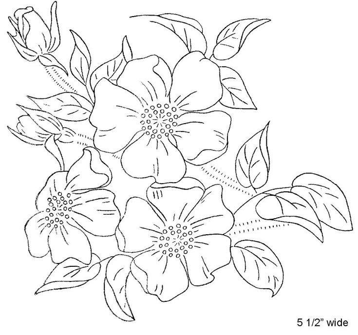 Best embroidery parchment colouring patterns images