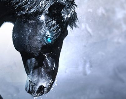 """Check out new work on my @Behance portfolio: """"Rise of the Pegasus"""" http://on.be.net/1OmdYUM"""