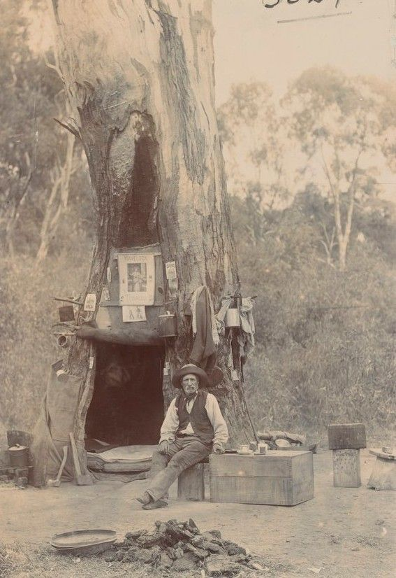 'Civilization in the bush' ca. 1800's. Photo shared by the State Library Victoria. v@e.