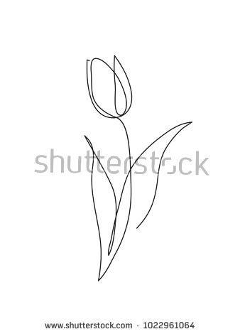 Tulip flower line art. Minimalist contour drawing. One line artwork – buy this v… – Liz