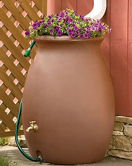 Rainwater Urn, 50 Gallon. Have these, but flowers on top are a