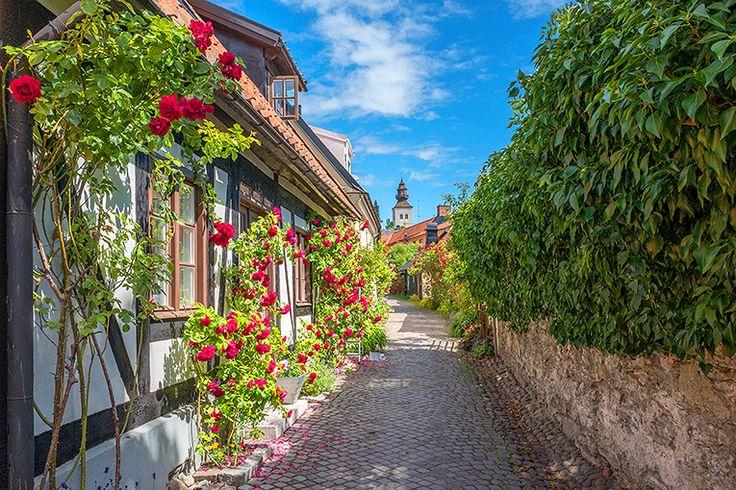 2. Gotland #gotland #visby #sverige #resa #semester