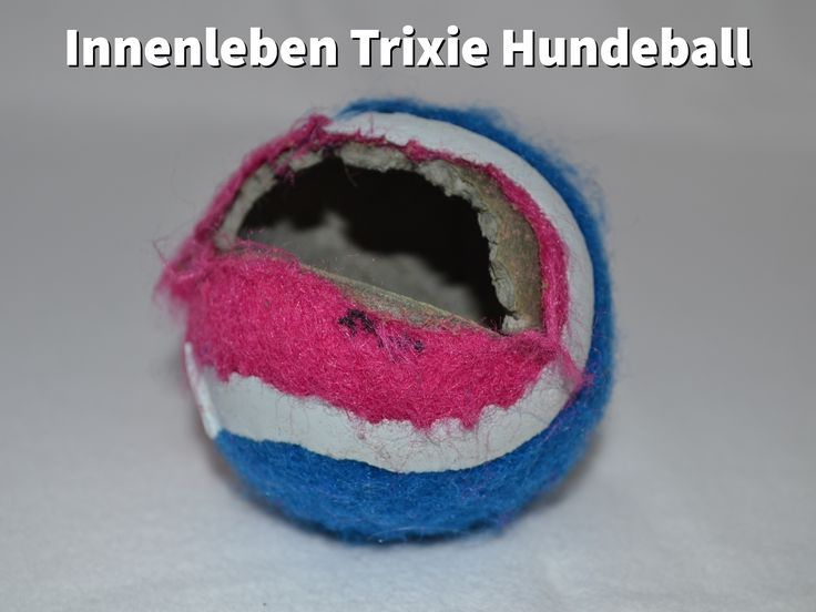 Zerbissener #Hundeball von Trixie #hundespielzeug