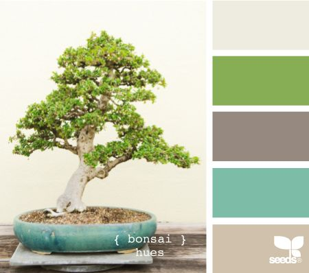 bonsai hues    I love this.  I'd do green walls, the grey in the middle for curtains, the light color at the bottom for paint on my farmhouse bed, and linens in the top color and the teal.
