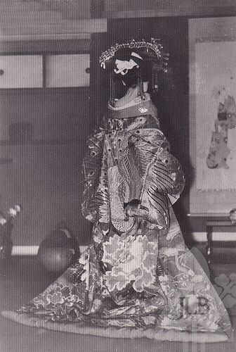 just a pretty photo of a tayuu