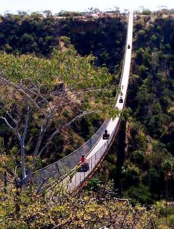 Los Cabos Activities Tip: Cross the longest suspension bridge in the world. It is 330 meters long (1,082 feet).