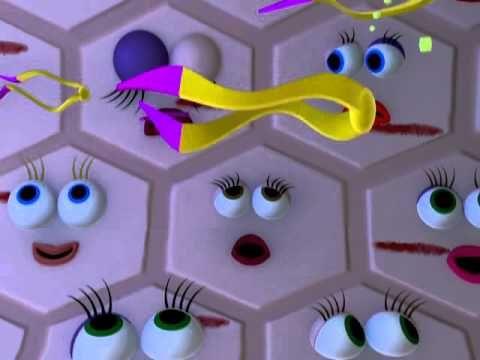 Animovaný film pro děti s cukrovkou - YouTube