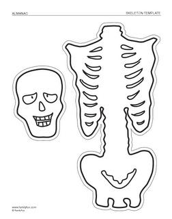Skeleton Template - Free