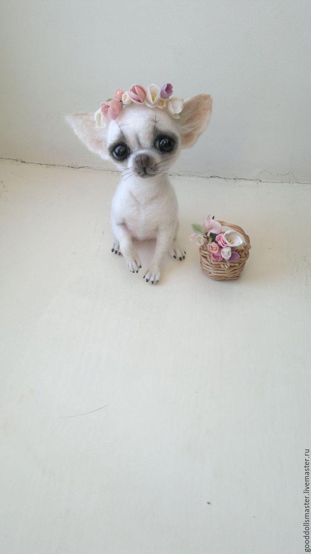 Купить Чишечка Джульетта в веночке) - белый, чихуахуа, купить собачку, валяная чихуа, валяная собачка