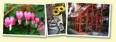 Florum - träväxthus burträsk växthus uterum inglasning utemiljö trädgård tomatplantor trädgårdsmöbler perenner fröer trädgårdsmiljö hantverk gurkplantor buskar frösådd skottkärra