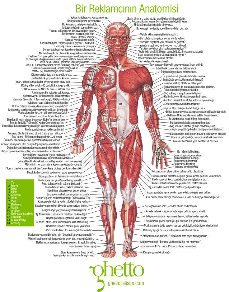 Bir Reklamcının Anatomisi