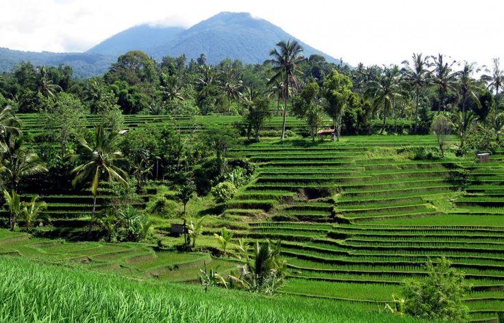 Landscapes Blog: Ten Principles of a Landscape Approach.