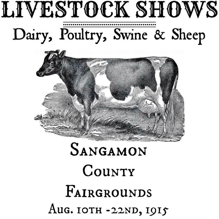 Knick-of-Time-county-fair-livestock-show-printable.jpg 800×800 pixels