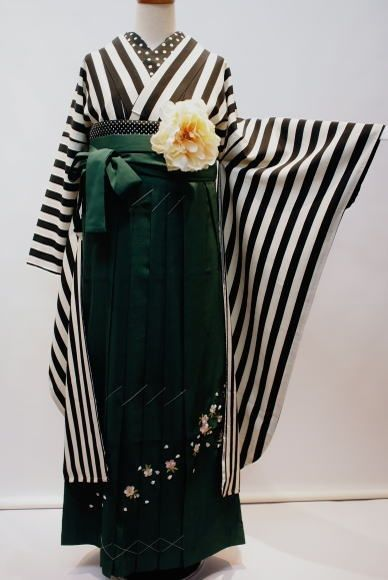 These deep forest green hakama (still basted together at the bottom with a stitch to help them stay folded–you would take these out before wearing) are sprinkled with tiny sakura blossoms, evoking the coming spring (Graduation is usually in March or April), and paired with a striking black and white striped kimono. The flatness of this coordination is brought into a fluffy 3D world with a big flower at the obi and some polka dots on the collar and obi that repeat the little sakura spec...
