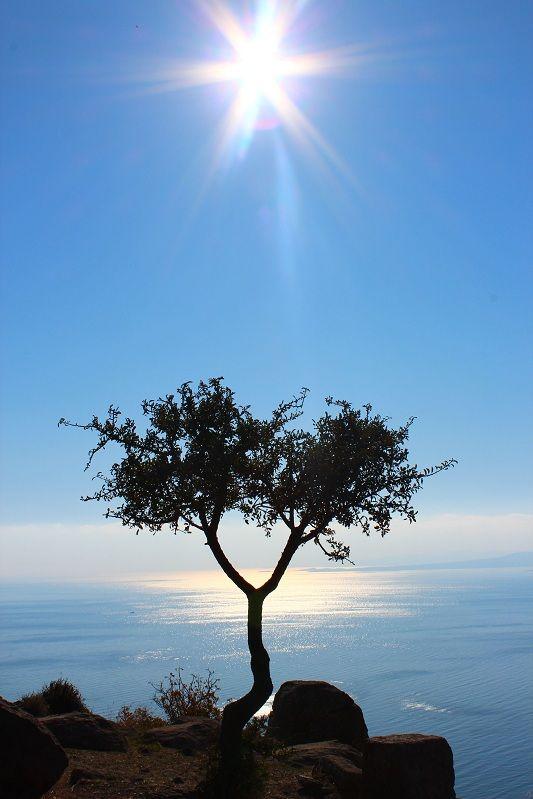 sign of life - Assos, Canakkale