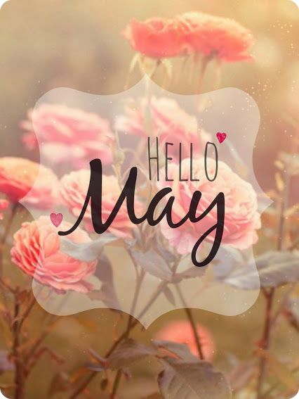 Hello, dear friends and colleagues. The new month has arrived! May it bring success and happiness for you. Continue your effort and struggle for the better future. Wishing you a very successful and shiny May :-)