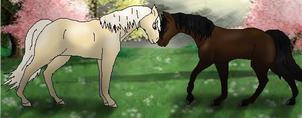 This is a picture I drew of a role play in my one of my favorite games, Star Stable Online  Characters: Cinnamon (The Cremello stallion) Shade (The darker mare)     NOTE: I do not own Shade, or the background. I only own the horse art and shading in the foreground