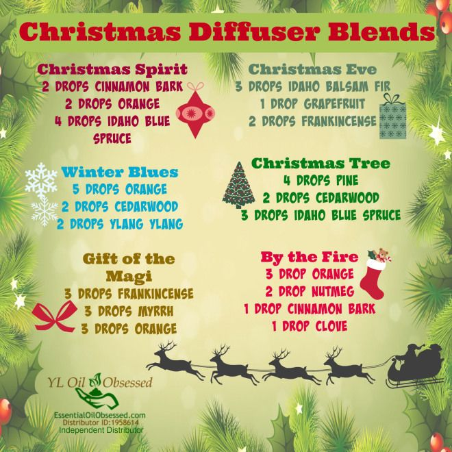 Holiday Cheer with a Diffuser | EssentialOilObsessed.com. Christmas diffuser blends