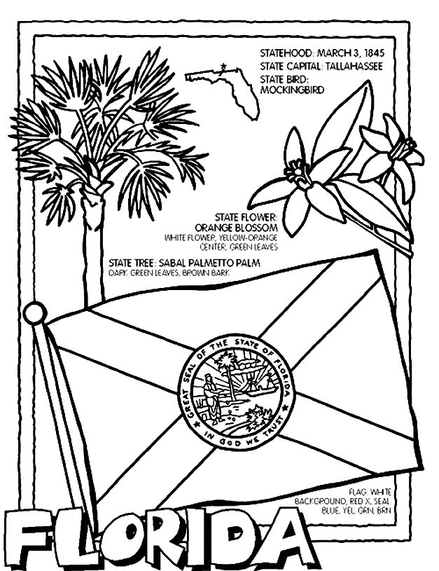 Florida State Symbols Coloring Pages | ... working on a coloring ...