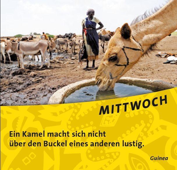 Ein #Kamel macht sich nicht über den Buckel eines anderen lustig. #StopMobbing