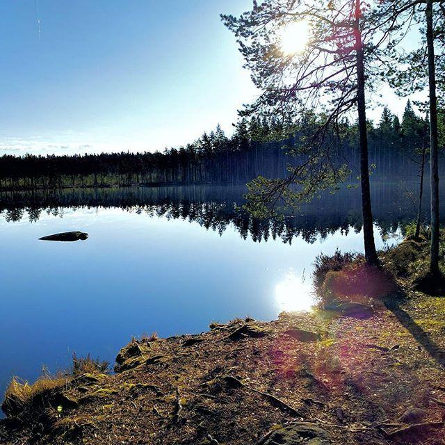 Finnish nature during spring time. #finland #nature  #spring #beautiful #suomenkevät #luonto #luontokuva #kaunista #aamu #peilityyni #winled #winledlighting #landofthousandlakes #lake #järvi #woodland #metsä #suomi #suomenluonto #kevät