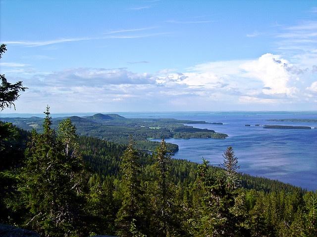 Tämäkin on Kolilta. Suuri järvi on Pielinen. Siellä kulkee Suomen ainoa sisävesien autolautta Lieksasta Kolille.