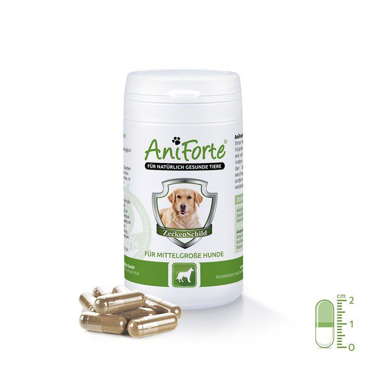 AniForte® ZeckenSchild Abwehr für mittelgrosse Hunde von 10 bis 35 kg