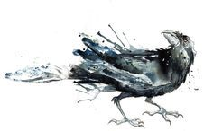 water color crow tattoos - Google Search