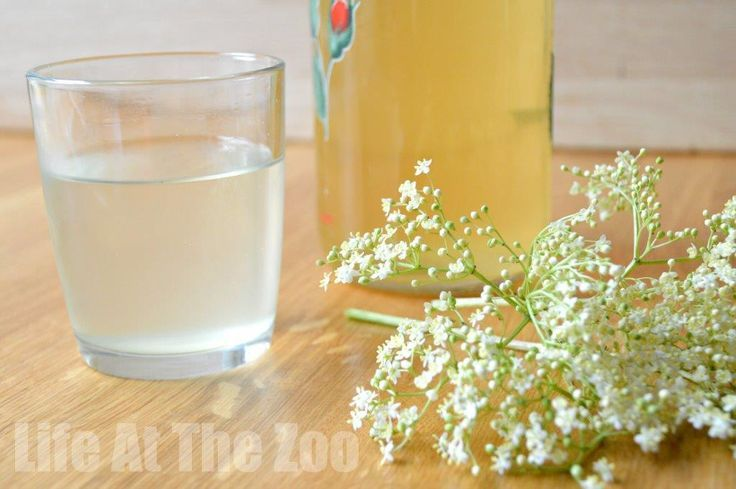 Easy Elderflower Cordial Recipe - this is so delicious and so refreshing on a hot summers day!