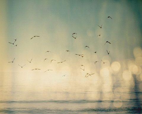 Framed Art   Where The Sky Meets The Sea