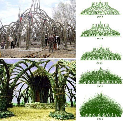 Organic sculpture  http://temporaryreality.blogspot.com/2010/07/tree-sculptures-and-living-buildings.html
