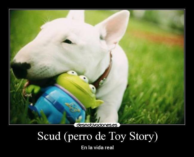 Pin On Toy Story Knarly