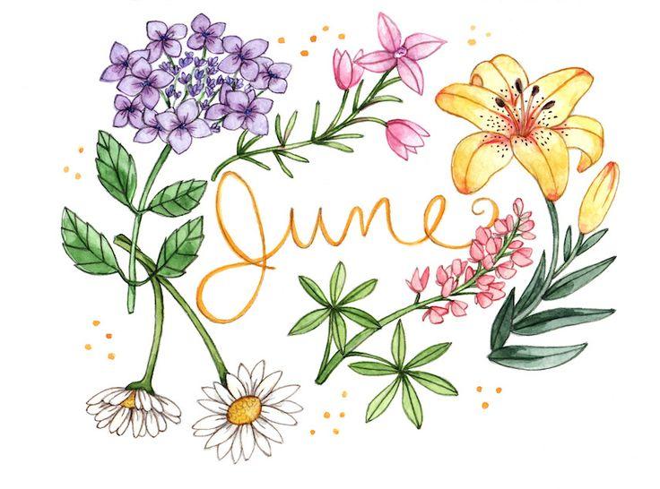 brookeweeberillustration:  Happy June!