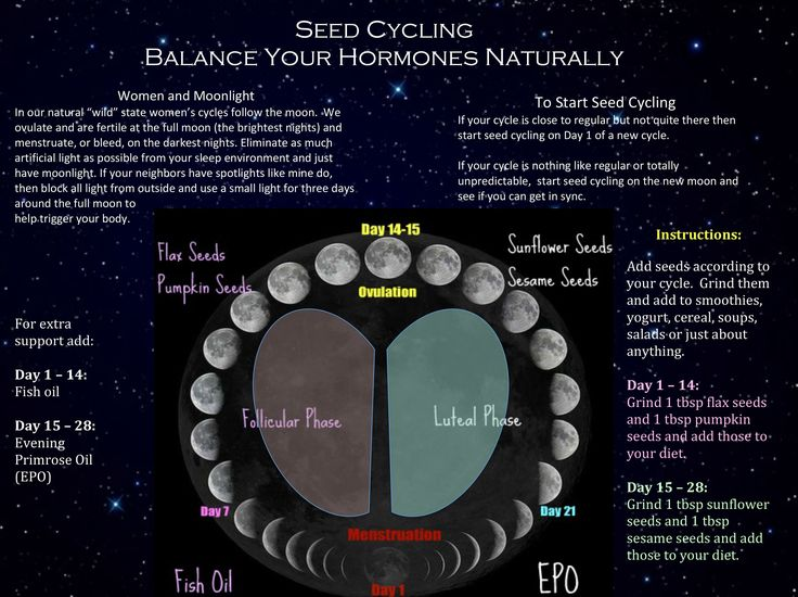 The big picture of seed cycling for hormone balance. Because your cycle follows the moon.
