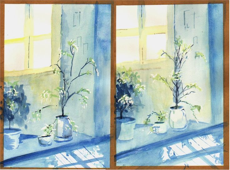 Planters - Window Bay