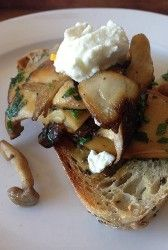 Mushrooms & Goats Cheese