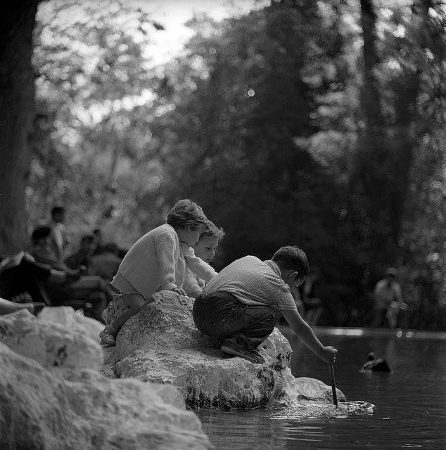 Εθνικός κήπος (πρώην Βασιλικός) 1959 φωτογραφία Nick Dewolf