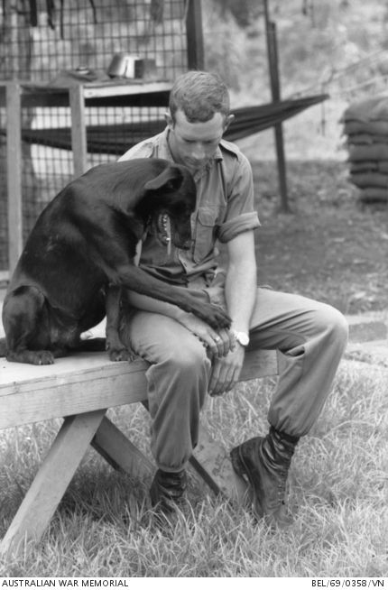 Nui Dat, South Vietnam. 1969-06. The black Labrador tracker dog, Julian, and his handler Private (Pte) Bob Pearson of Bulli, NSW, rest after a workout at the 1st Australian Task Force (1ATF). Julian and Bob are from the Tracker Platoon of the 9th Battalion, The Royal Australian Regiment (9RAR).