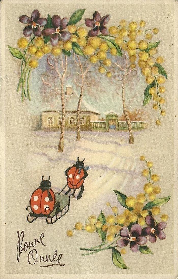 vintage French Happy New Year postcard ladybugs