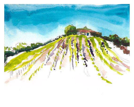 California Vineyards - Napa? Sonoma? Paso Robles? Vineyard in the Sun. Watercolor Painting