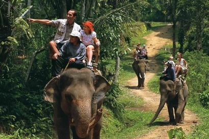 Bali Elephant Ride offers an adventure experience of riding an elephant into the jungle, village, and rice terrace in Bali