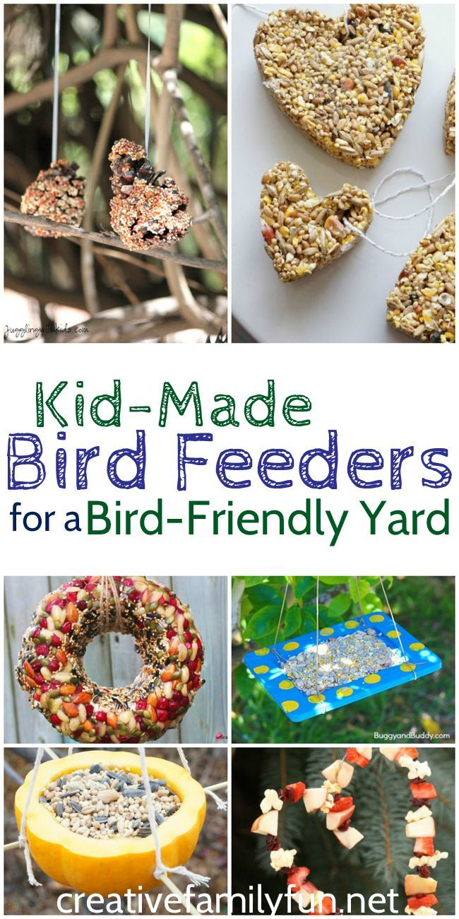 Create a bird-friendly yard with these kid-made DIY bird feeders.