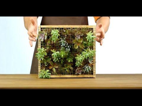 17 meilleures id es propos de cadre v g tal sur pinterest cadre fleur cadre succulente et. Black Bedroom Furniture Sets. Home Design Ideas