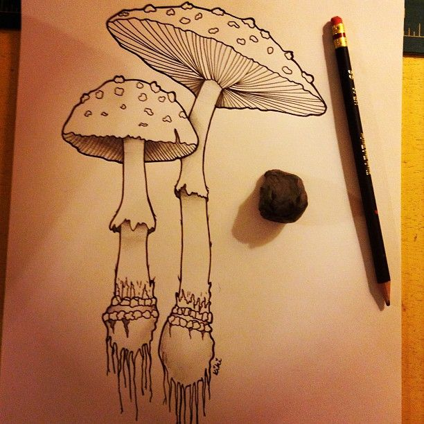 Impressive Grey Ink Mushroom Tattoos Designs