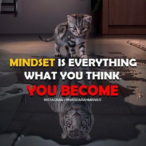 Your mindset can determine your real success. #success #quote #mindset